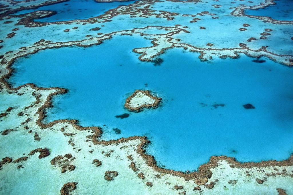 Australia - Queensland - Great Barrier Reef